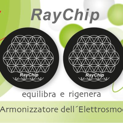 RayChip